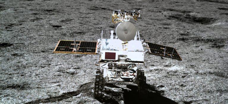 Китайцы прорастили хлопок на Луне: фото