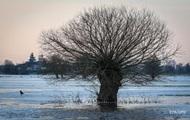 Температура на Земле снижается второй год подряд – NASA