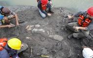 В Панаме нашли останки жившей 20 млн лет назад морской коровы