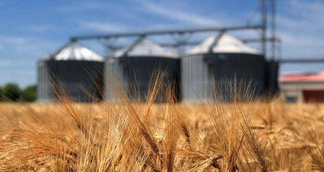 Украина сокращает экспорт зерна через морские порты