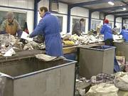 Инвестиционная компания планирует построить в Житомире крупнейший в Украине завод по переработке мусора