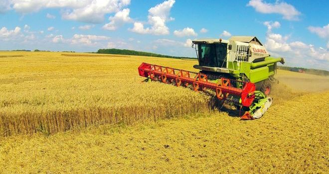 Агрохолдинг Герег покупает активы «Оболони»