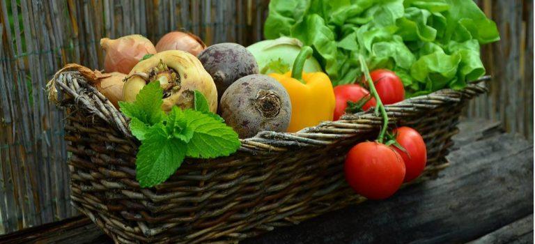 Цены на овощи через год могут снизиться в 10-15 раз – эксперты