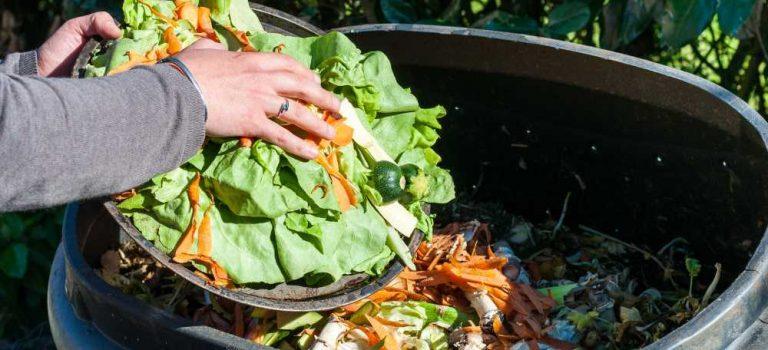 В ЕС пропадает 20% продуктов питания в год. С этим будут бороться
