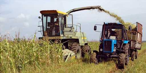 Половина аграрных предприятий Украины убыточна